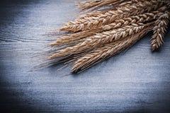 Vue sur le groupe d'oreilles de blé Images stock