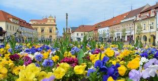 Vue sur le parterre sur la place Ville tchèque Podebrady Images libres de droits