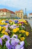 Vue sur le parterre sur la place Ville tchèque Podebrady Image stock
