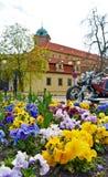 Vue sur le parterre sur la place Ville tchèque Podebrady Photos libres de droits