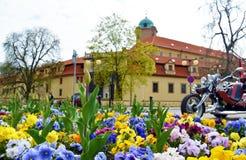 Vue sur le parterre sur la place Ville tchèque Podebrady Photographie stock