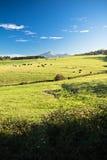Vue sur le rhune coloré de La de montagne au-dessus du pré de vert de ressort en ciel bleu Image stock