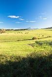 Vue sur le rhune coloré de La de montagne au-dessus du pré de vert de ressort en ciel bleu Photo libre de droits