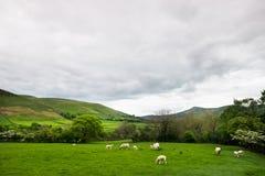 Vue sur les collines près d'Edale, parc national de secteur maximal, R-U photos libres de droits
