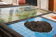 Vue sur Paseo De Canarias photos libres de droits