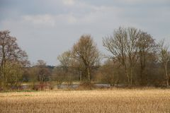 Vue sur un champ fauché et arbres et une mer dans l'emsland Allemagne de rhede photo stock