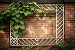 Vue sur un mur de briques Image stock