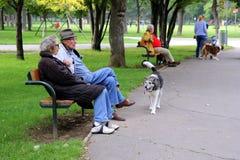 Vue sur un parc avec les personnes âgées s'asseyant sur un banc et des chiens de marche photographie stock libre de droits