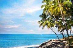 Vue tropicale d'océan image libre de droits