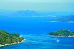 Vue tropicale de forêt en île de Seyshelles Photographie stock libre de droits