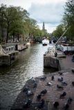 Vue typique de canal et de pigeons d'Amsterdam Photos stock