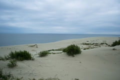 Vue vers la mer baltique de la broche curonian Image stock