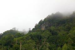 Vue verte de montagne en brouillard Photos libres de droits