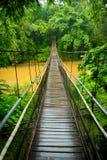 Vue verticale d'un pont suspendu dans la jungle près de Chiang M Photographie stock libre de droits