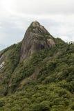 Vue verticale d'un visage de roche de montagne avec quelques arbres sous nuageux blanc - le serra du pico e font le lopo images stock