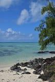 Vue verticale de belle plage avec les roches noires chez Ile Cerfs aux. Îles Maurice Image stock
