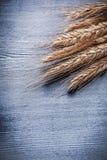 Vue verticale de vue sur le groupe d'oreilles de blé Photo stock
