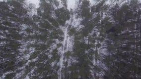 Vuele con el abejón sobre cuentos del invierno con nieve almacen de metraje de vídeo
