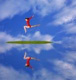 Vuele en cielo Imagen de archivo