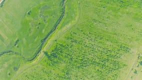 Vuelo aéreo de la visión superior sobre prados herbosos verdes, los caminos del río y paisaje rural almacen de metraje de vídeo