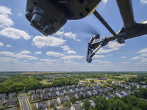Vuelo aéreo del abejón a través del aire Fotografía de archivo