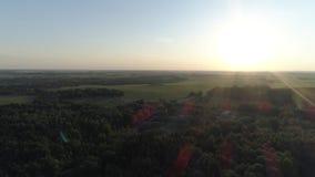 Vuelo aéreo sobre bosques y campos en tiempo soleado del verano almacen de metraje de vídeo