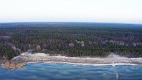 Vuelo aéreo sobre costa y bosque a lo largo de la orilla almacen de metraje de vídeo