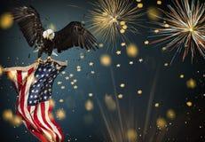 Vuelo americano de Eagle calvo con la bandera Fotos de archivo libres de regalías