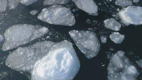 Vuelo antártico del abejón sobre el océano del hielo del flotador almacen de video