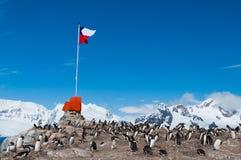 Vuelo bajo chileno de la bandera de la Antártida Imagenes de archivo