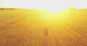 Vuelo bajo sobre el turista del hombre joven que camina a través de un campo de trigo enorme Manos concepto para arriba, del gana almacen de metraje de vídeo
