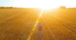 Vuelo bajo sobre el turista del hombre joven que camina a través de un campo de trigo enorme Manos concepto para arriba, del gana almacen de video