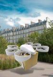 Vuelo comercial del abejón alrededor de París libre illustration