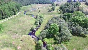 Vuelo de la baja altitud a través de la cañada entre Oban y Taynuilt, Argyll - parte 01 almacen de metraje de vídeo