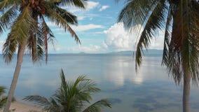 Vuelo de la cámara abajo a la playa con las palmeras en centro turístico de lujo almacen de video