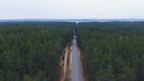 Vuelo de la cámara sobre el camino en madera Bosque denso con un camino con el hombre corriente y un coche en un borde de la carr almacen de video