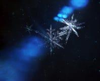 Vuelo de la familia de los copos de nieve a través del universo fotografía de archivo