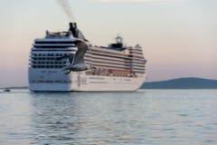 Vuelo de la gaviota delante del barco de cruceros Fotos de archivo libres de regalías