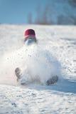 Vuelo de la nieve fotografía de archivo libre de regalías