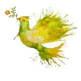 Vuelo de la paloma del verde con la rama de la flor Imagenes de archivo