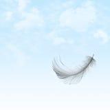 Vuelo de la pluma en cielo Foto de archivo