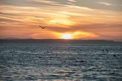 Vuelo de la puesta del sol Fotos de archivo libres de regalías