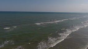 Vuelo del abejón sobre el mar y la orilla