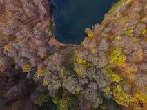 Vuelo del abejón sobre Gosh un lago ocultado en los bosques armenios del otoño fotos de archivo libres de regalías