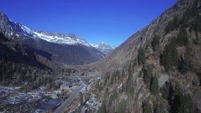 Vuelo del abejón sobre un bosque alpino Nevado metrajes