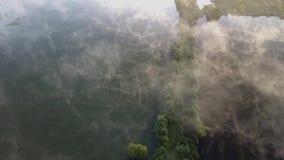 Vuelo del abejón sobre un lago almacen de video
