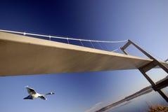 Vuelo del cisne bajo el puente Imagen de archivo libre de regalías