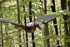 Vuelo del dinosaurio a través del bosque Fotos de archivo libres de regalías