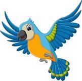 Vuelo del macaw de la historieta Foto de archivo libre de regalías