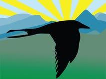 Vuelo del pájaro Fotografía de archivo libre de regalías